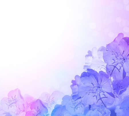 blue background: Blue pink flower background.