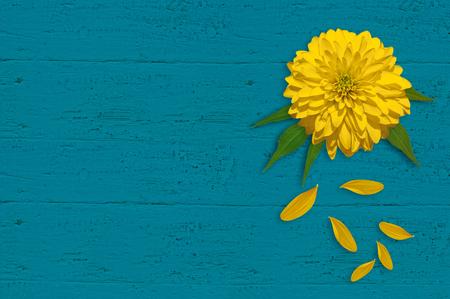 Esmalte De Uñas Y Amarillas Flores Amarillas Los Pétalos En