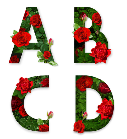 A, B, C, D letters of the alphabet with red roses on white background Zdjęcie Seryjne