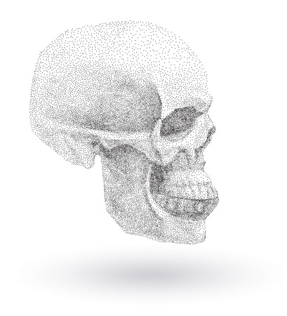 Vector Human skull in profile on white background.. Simple black points on white background. Digital pointillism. Points set in shape of skull