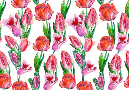 Tulip seamless pattern. Watercolor a bouquet of spring red pink tulips isolated on white background