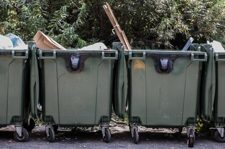 Garbage bins near green trees in a city on asphalt