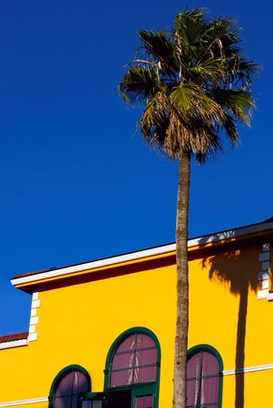 California style southern scene - a yellow house and a palm tree with the blue sky background photo