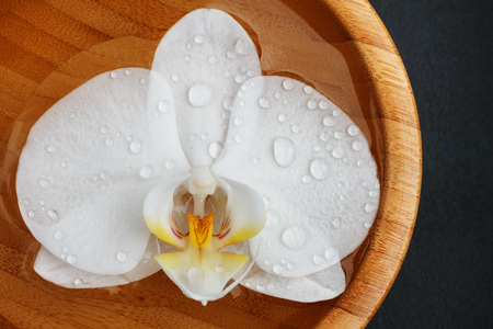 White orchid floating in bamboo bowl on black background. Top view. Фото со стока