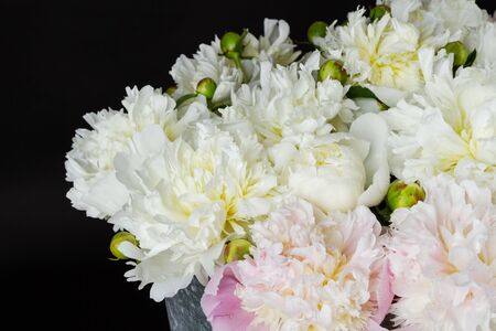 bouquet of pink and white peonies Фото со стока