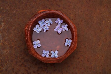 Lilac flower petals floating in a bowl of water on rusty background