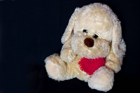 loveable: White puppy-toy with heart on black background Stock Photo