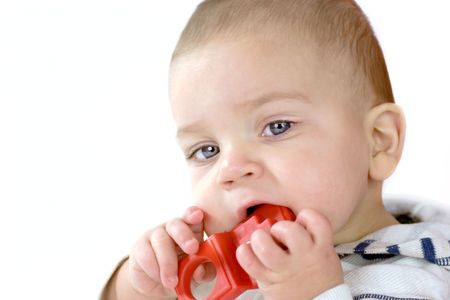 nibble: Baby gnawing red toy cause of teeth growing isolated on white Stock Photo
