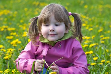 ponytails: Upset little girl looking away wearing pink coat and ponytails sitting in dandelions meadow Stock Photo