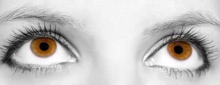 Close-up of Beautiful brown eyes, rest of face monochrome photo