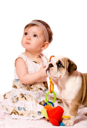 Baby and puppy of english bulldog looking up together isolated on white