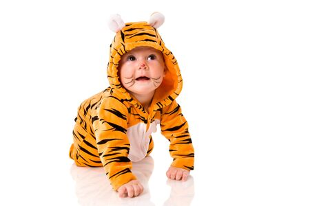 Six month baby wearing tiger suit sitting isolated on white photo