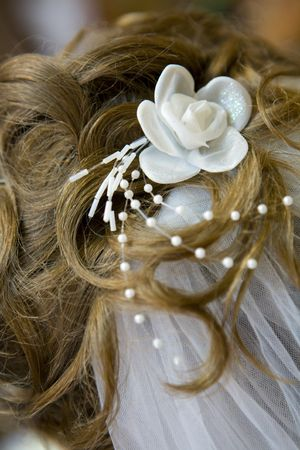 Bride hair with flower and veil, back view