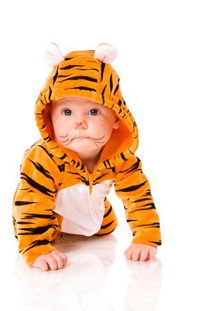 tigre bebe: Seis meses beb� que usa traje de tigre sentado aisladas en blanco