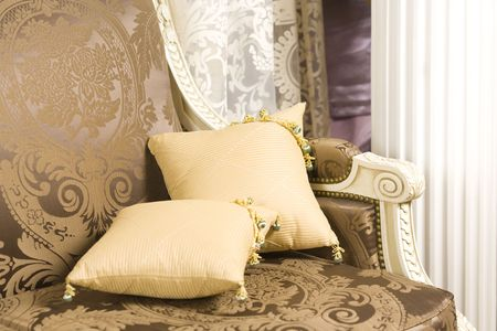 Home interior close up - two cushions on beautiful sofa Stock Photo - 6167146
