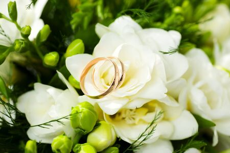 Two Golden Wedding Rings on flowers macro shot