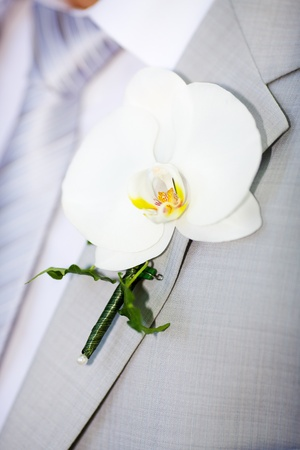 buttonhole: buttonhole with orchid detail of grooms wedding dressup Stock Photo