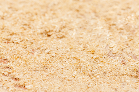 Thin Wood sawdust texture material background closeup