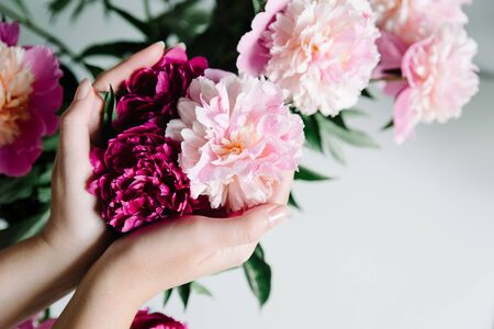 pink persian buttercup flowers in hands. Curly peony ranunculus. Empty spase