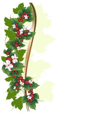 Fond blanc avec des fleurs d'ornement et les petits fruits