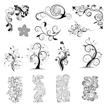 Collection vector floral ornate design elements