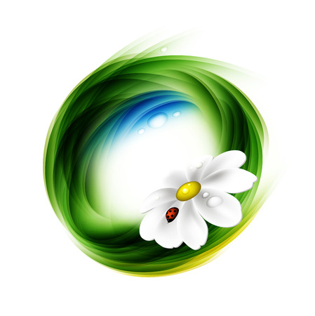 Summer Abstract Design With Green Lines, Chamomile And Ladybird On A Gray Background Vector