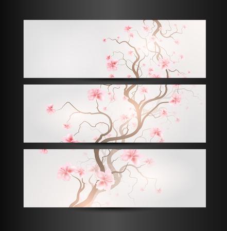 transparence: Design With Sakura Tree