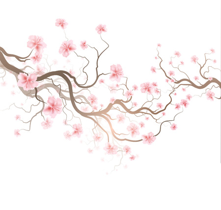 Design Background With Sakura Tree Vector