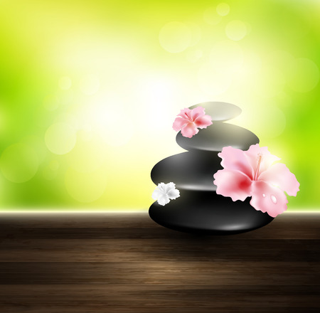 transparence: Pebbles On A Wooden Board With Flower And Sunlight