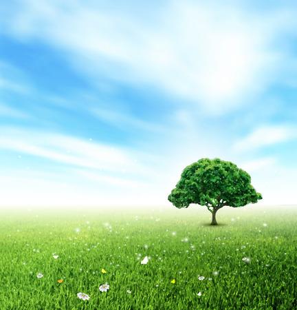 Paisaje de verano con el campo, Cielo, Árbol, Césped, flores y mariposas
