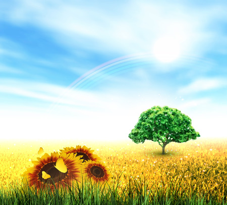 Summer Landscape With Field, Sky, Sun, Rainbow, Tree, Grass, Sunflowers And Butterflies Vector