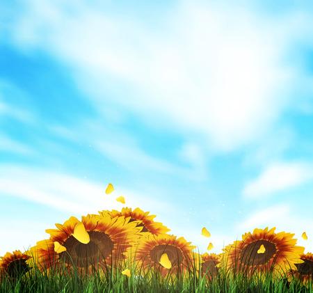 herbe ciel: Paysage d'�t� avec le champ, Ciel, Herbe, tournesols et les papillons Illustration