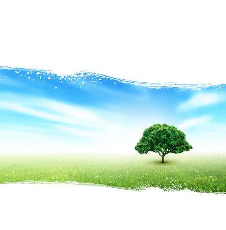 field and sky: Estate Paesaggio Con Campo, Cielo, Albero, erba, fiori su fondo bianco verniciato
