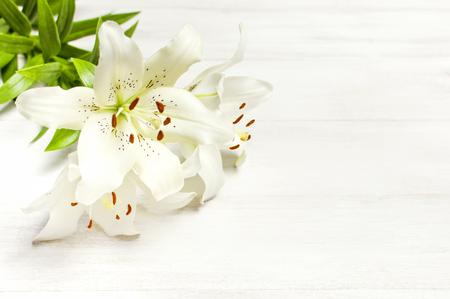 Strauß der weißen Lilien lokalisiert auf einer weißen hölzernen Hintergrundoberansicht. Blumen Lilie schönen Blumenstrauß weiße Blumen Blumenhintergrund Konzept Urlaub Standard-Bild