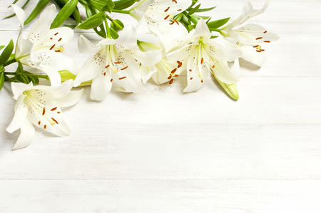 Frame of white lilies isolated on a white wooden background top view. Flowers lily beautiful bouquet white flowers floral background concept holiday