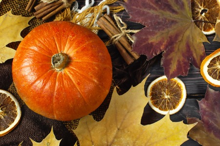 Orange pumpkin, cinnamon, slices of dried orange, autumn colorful leaves and checkered plaid on a dark wooden background top view with space for text Autumn Pumpkin Thanksgiving Background. 版權商用圖片