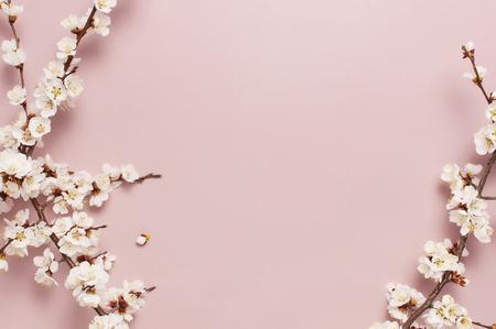 Lente grens achtergrond met mooie wit bloeiende takken. Pastelroze achtergrond, bloei delicate bloemen. Lente concept. Plat lag bovenaanzicht kopieerruimte Stockfoto
