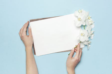 Woman's hands hold branch of Phalaenopsis orchid flowers Blank white sheet of paper on pastel blue background top view flat lay Mockup for your design Planning concept. Female desktop Tropical flower.