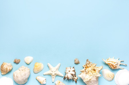 Summer concept, marine background. Different seashells and starfish on pastel blue background. Top view, flat lay, copy space. Sea summer vacation background. Travel, marine souvenir. Imagens