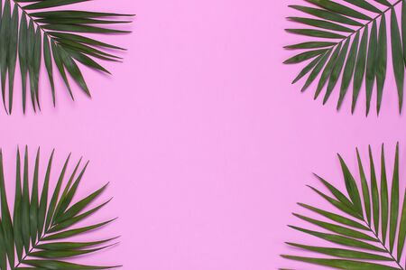 Frame of tropical palm leaves on pastel pink background. Flat lay, top view, copy space. Summer background, nature. Creative minimal background with tropical leaves. Leaf pattern. Stock Photo