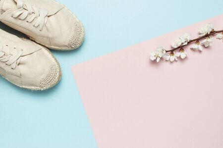 Beige fashionable womens espadrilles with spring flowering branch on color pastel blue pink background. Creative concept of spring shoes, fashion blog or magazine concept Flat lay top view copy space