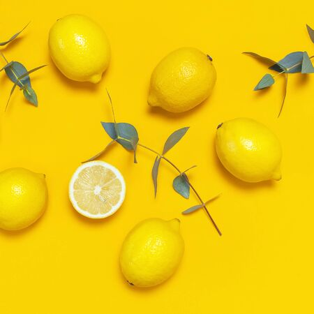 Ripe juicy lemons and green eucalyptus twigs on bright yellow background. Lemon fruit, citrus minimal concept. Creative summer food background. Flat lay, top view, copy space. Square. 免版税图像