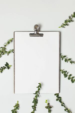 Blank white paper with folder and metal clothespin, spring green twigs of plants on gray background top view flat lay copy space. Decorative plant branch, flowers composition mockup Minimalistic style.