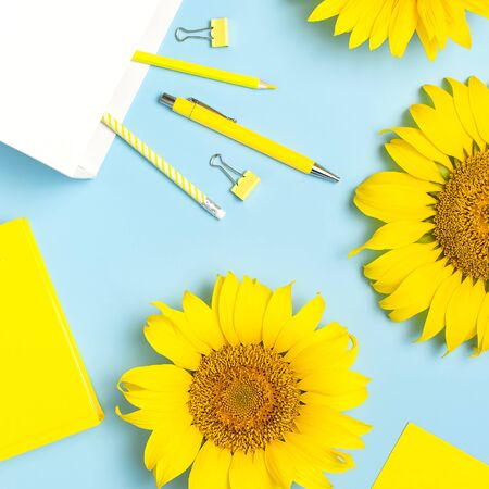 Top view flat lay of workspace desk styled design with sunflowers, white paper bag pencils pen notebook diary paper clips on blue background. Education concept Stationery. Sunflower natural background 스톡 콘텐츠