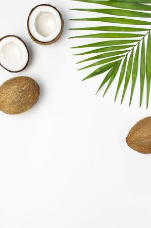 Tropical leaves and fresh coconut on light gray background top view copy space. Summer Flat lay background. Healthy cooking. Creative healthy food concept, half of coconut, nature.