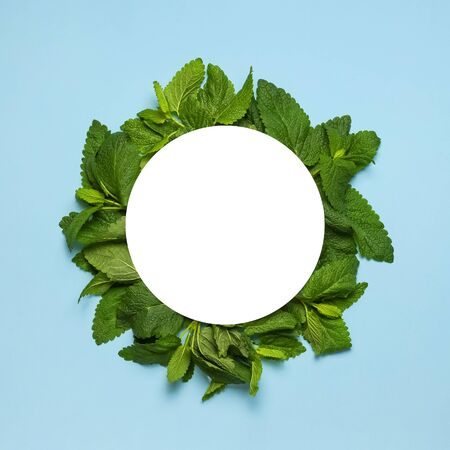 Fresh green leaves of mint, lemon balm, peppermint and white blank paper on blue background top view. Mint leaf texture. Ecology natural layout. Flat lay Mint leaves pattern spearmint herbs nature.