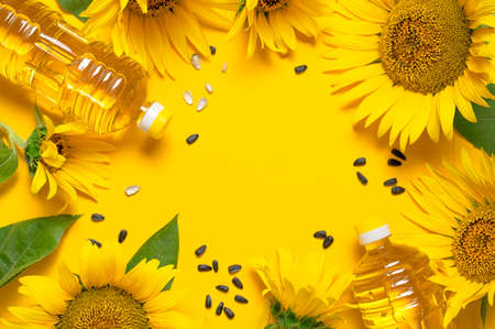 Plastic bottles with sunflower oil, fresh yellow sunflowers, sunflower seeds on yellow background. Flat lay top view copy space. Harvest time agriculture farming oil production. Healthy oils, food