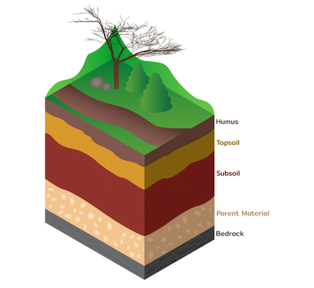 Soil layers cutaway for geology science education. Vector illustration.