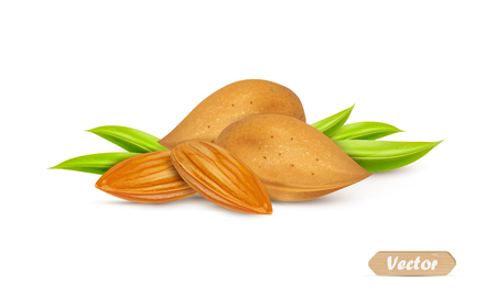 Almonds with kernels and leaves isolated on white background. Vector illustration.