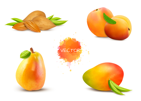 Nut almonds, apricot, pear, mango, peach with green leaves. Vector illustration. Fruit set isolated on white background.